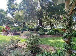 202 street zen garden.jpg
