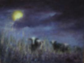 night pasture.jpg