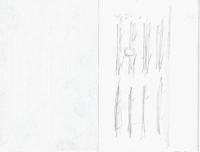 PE 2.jpeg