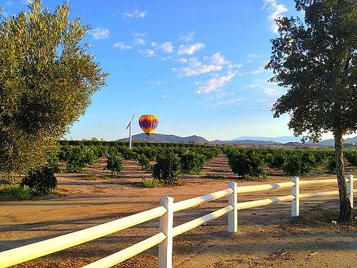 Hot Air Balloon IMG_9172.jpg