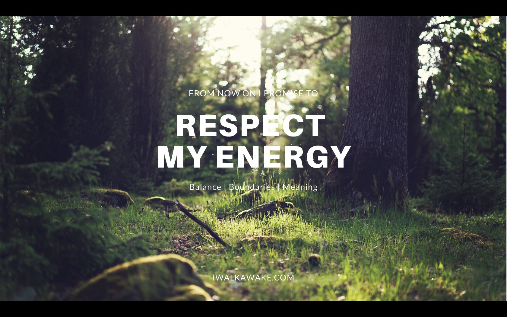 Respect_my_energy_screensaver.png