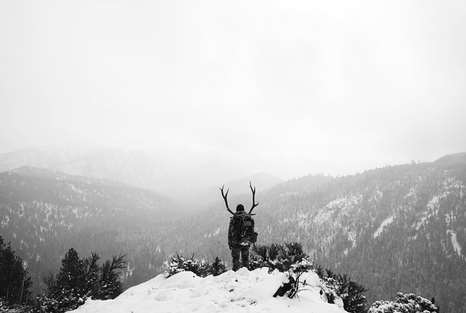 How to Pack Out an Elk: The Complete Guide to Becoming a Human Pack Horse