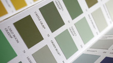 Greener decorating: Everything you need to know about 5 leading eco paint brands