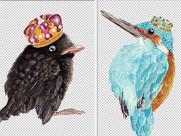 New Royal Bird Prints