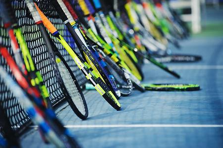 Raquetas y Red