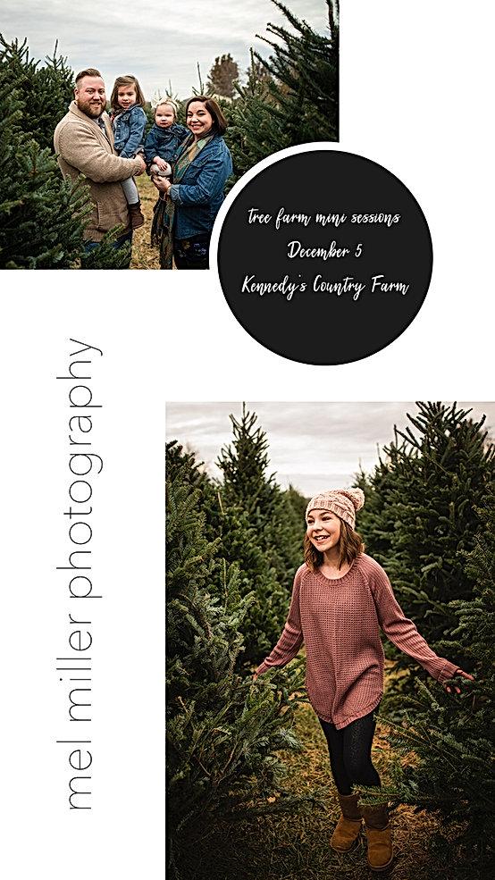 Tree Farm Mini Sessions.jpg