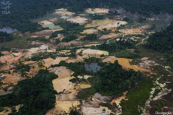 Cicatrizes na floresta: garimpo avançou 30% na Terra Indígena Yanomami em 2020