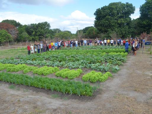 Sustentabilidade e o bem viver dos povos indígenas de Roraima