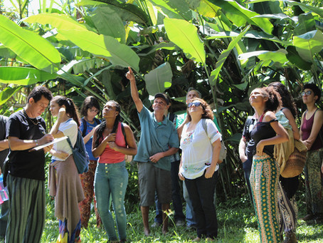 Vivências agroecológicas nos diversos territórios marcam o segundo dia do Encontro