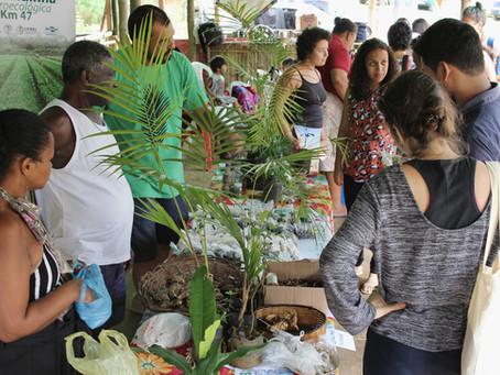 Comida, territórios e articulações em redes fizeram o Barracão Agroecológico e Cultural