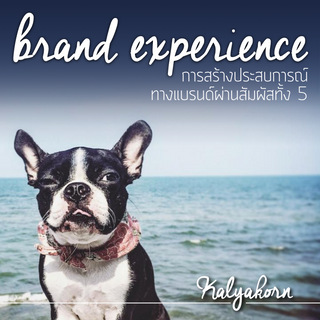 Creating Brand Experience