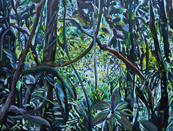 Selva ecuatorial, Pastaza II