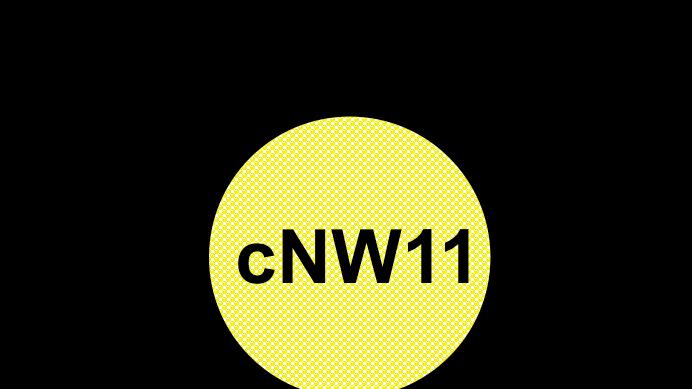 cNW11-3C (1 mg, ≥97% pure)