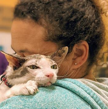 Cat cuddles with Amy.jpg