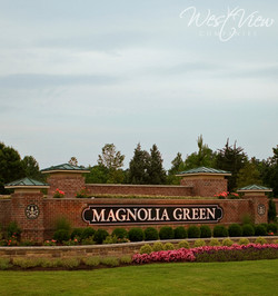Magnolia Green