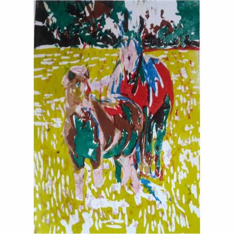 Serie caballos VII