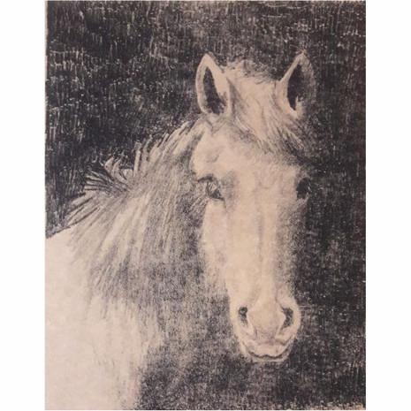 Serie caballos V