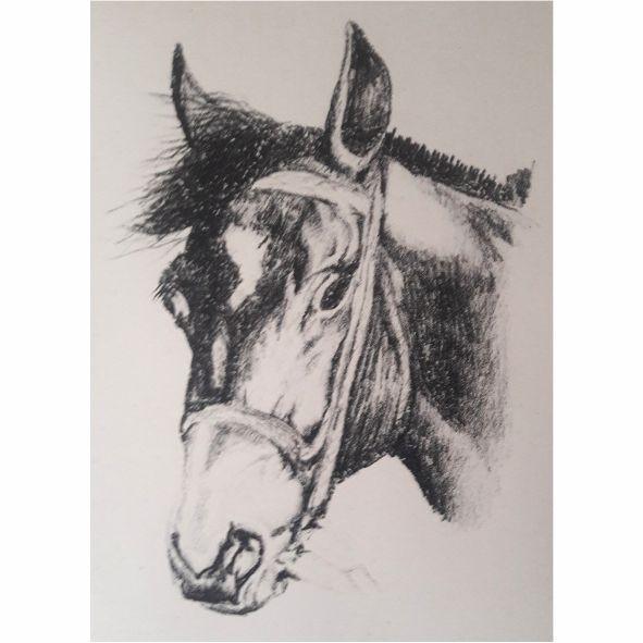 Serie caballos III