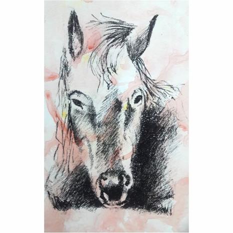 Serie caballos I