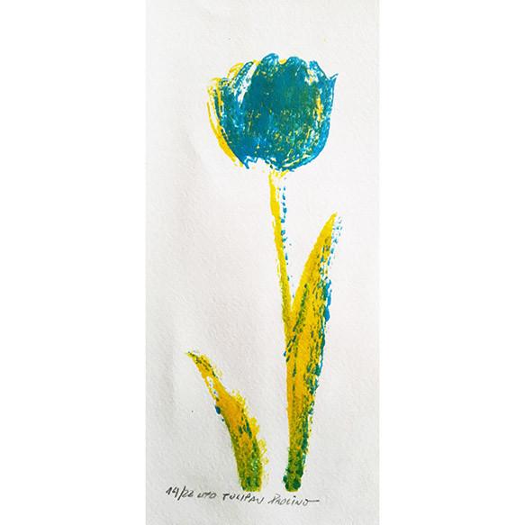 Tulipanes I