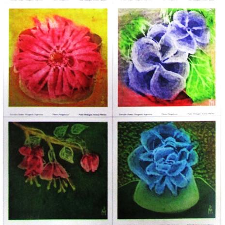 Flores Patagónicas I