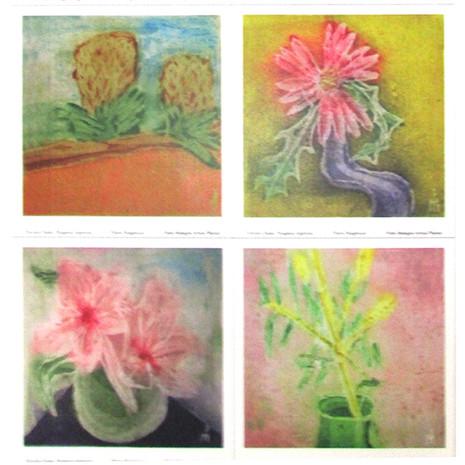 Flores Patagónicas V