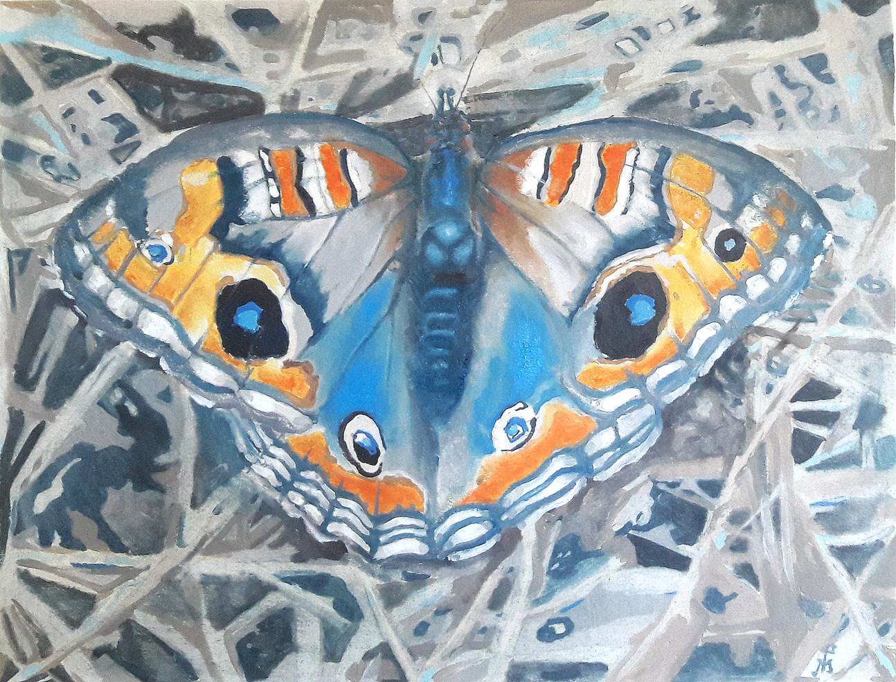 """""""Mariposa sobre el jardín"""""""