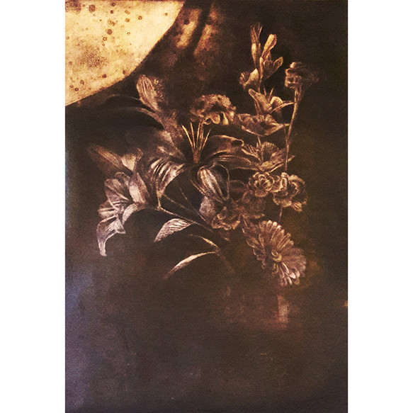 Flores Negras II