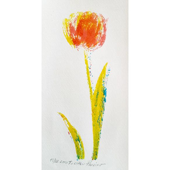 Tulipanes II