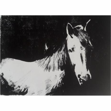 Serie caballos VI