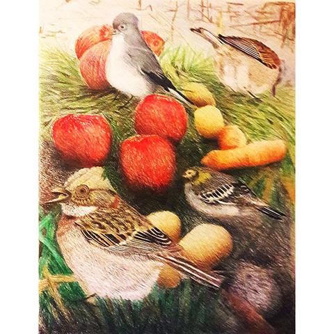 Naturaleza muerta y pájaros