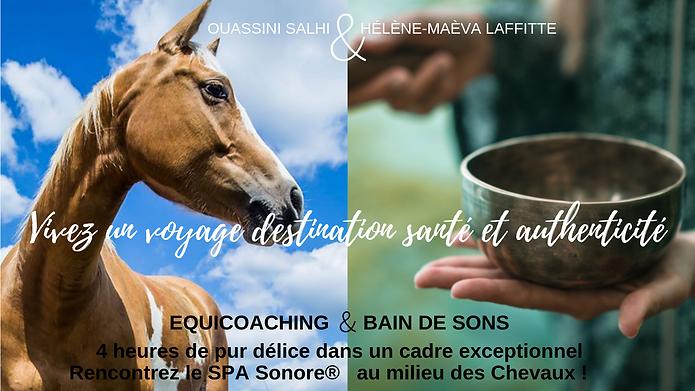 Rencontrez_votre_cheval_intérieur_grâce_