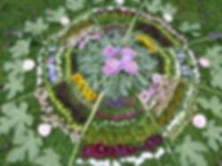 ornament-709787_960_720.jpg