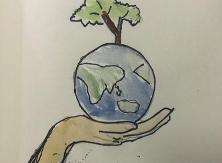 Do not cut trees?