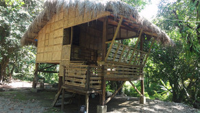 "New ""Kubo"" in MIBNP to conduct community conservation actions"