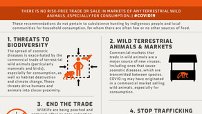 We signed the pledge to end wild life trade