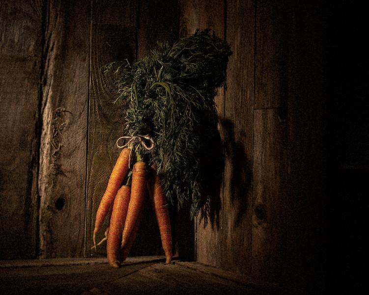 02-Carrot v1(0476)-C.jpg