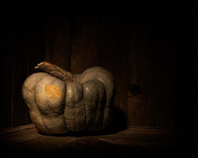 36-Pumpkin v17a(1269)-C.jpg