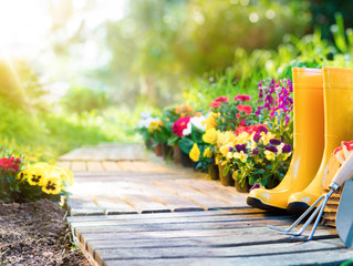 5 Health Benefits of Gardening