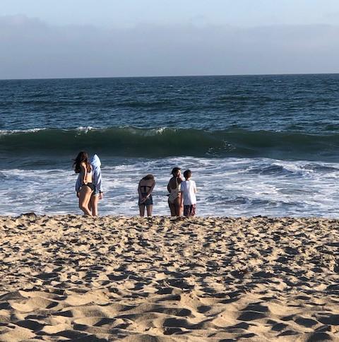 Apex at the Beach