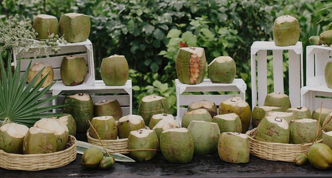 Coconut welcoming drink