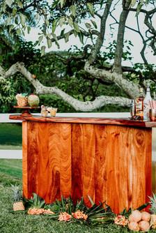 Sandy bar -Hawaii bar service