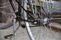 Aktivitäten_32_Fahrrad_Toni_Montana_Studios.jpg