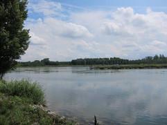 Aktivitäten_34_Rheinauen.JPG