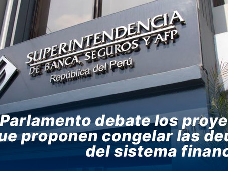Parlamento debate los proyectos que proponen congelar las deudas del sistema financiero