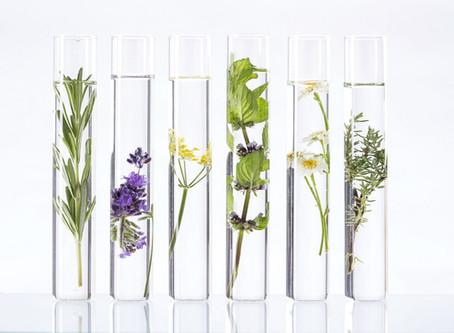 Cosmetica of cosmeceuticals: wat is het verschil?