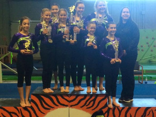 Flips Gymnastics Wins 1st Place in Invitational Competition