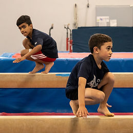 boys gymnastics.jpg