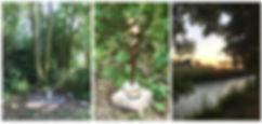 natuur bron in de vrouw (pages).jpg