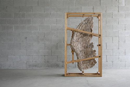 Cage n 1 - Daniele Accossato